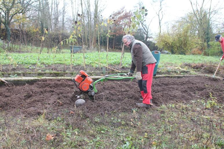 Vor dem Pflanzen muss erst der Boden gelockert werden.